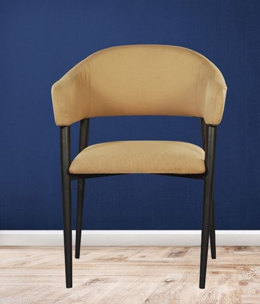 Picture of Wooden Black Chair with Armrest & Cushion